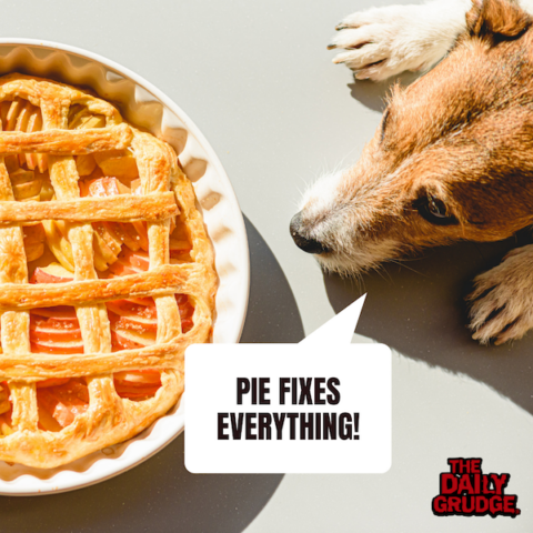 Pie Fixes Everything!